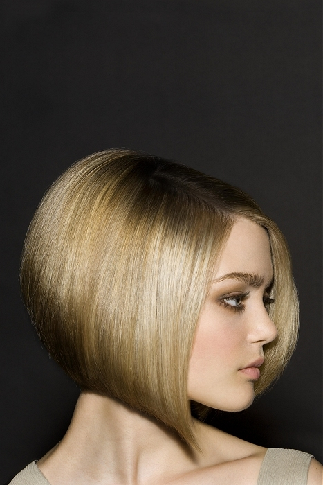 Surprising Inverted Bob Hairstyles 2017 Haircuts Hairstyles And Hair Colors Hairstyles For Men Maxibearus