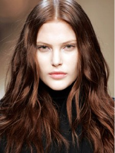 dark brown hairstyles 2012