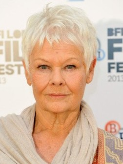 judy-dench-gray-hair_color
