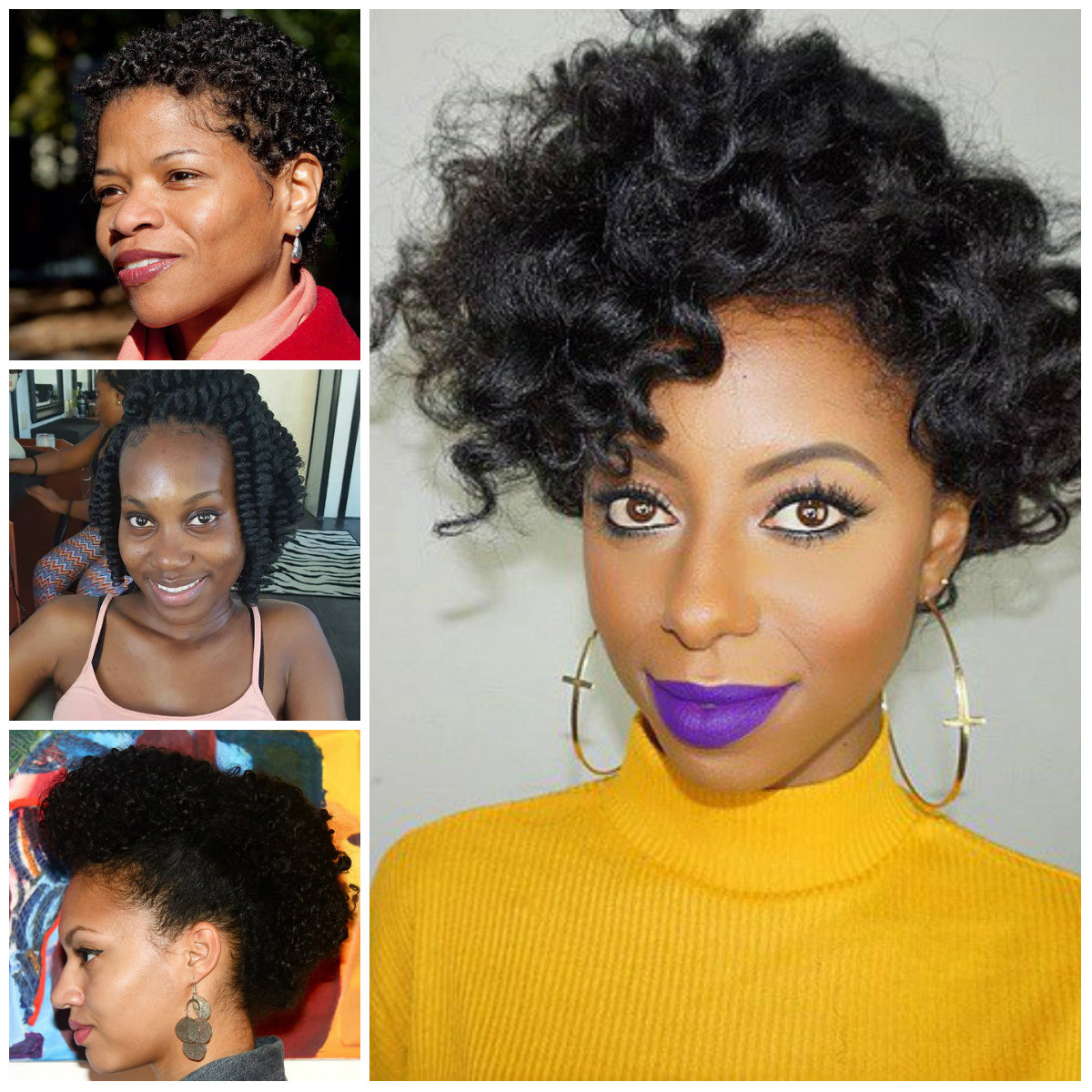 Natural Hairstyles for Afro American Women