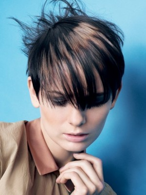 brown hair highlights