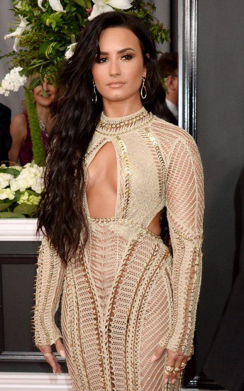 Demi Lovato Ultra Long Hair